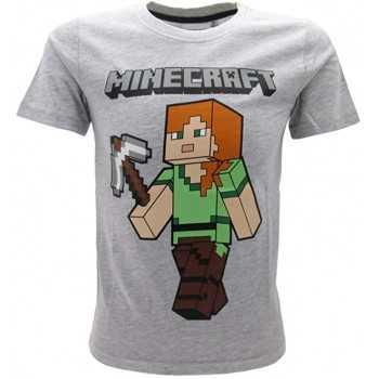 MINECRAFT Tshirt 14 anni...